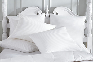 A edmonton pillow